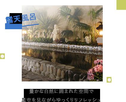 露天風呂:豊かな自然に囲まれた空間で星空を見ながらゆっくりリフレッシュ